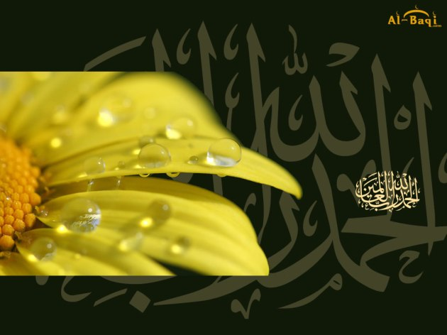 13-alhamdulillah